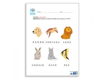 Animales nombres Answer key